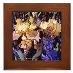 Yellow and Purple Irises Framed Tile