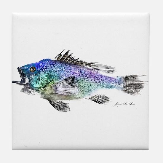 Black Sea Bass Tile Coaster