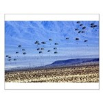 U S ARMY RANGERS Small Poster