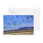 U S ARMY RANGERS Greeting Cards (Pk of 10)