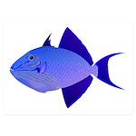 Niger Triggerfish 5x7 Flat Cards (Set of 20)