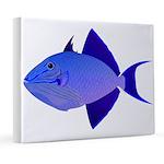 Niger Triggerfish 8x10 Canvas Print
