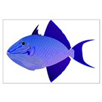 Niger Triggerfish Posters