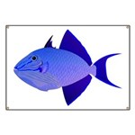 Niger Triggerfish Banner
