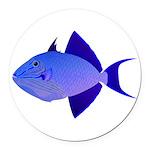 Niger Triggerfish Round Car Magnet