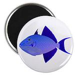 Niger Triggerfish Magnets