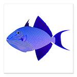 Niger Triggerfish Square Car Magnet 3