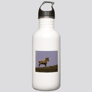 Bighorn Sheep Stainless Water Bottle 1.0L