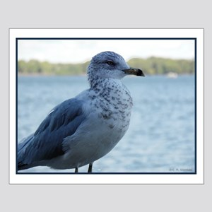Seagull Posters