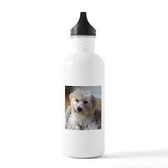 Coton De Tulear Water Bottle