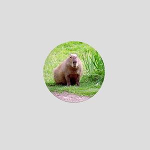 Capybara Looking Forward Mini Button