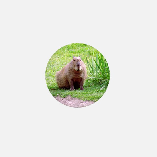 Capybara Looking Forward Mini Button