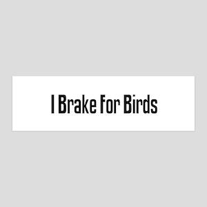 I Brake For Birds 36x11 Wall Peel