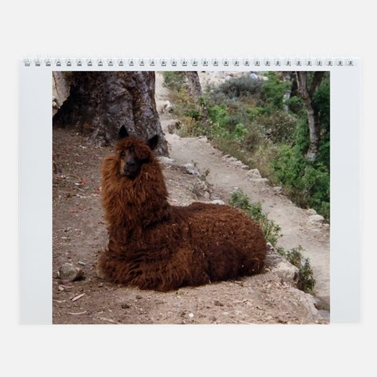 Llamas and More Wall Calendar
