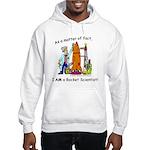 I AM a rocket scientist! Hooded Sweatshirt