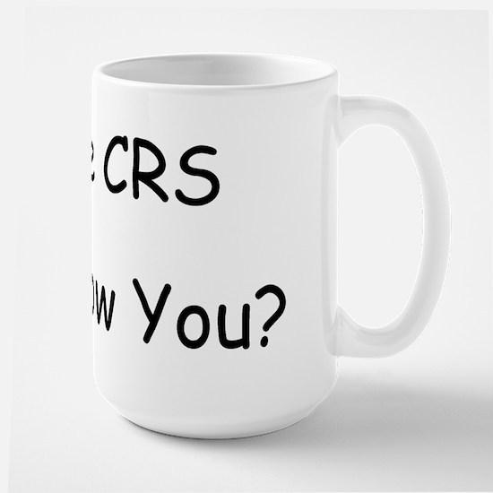 I Have CRS Large Mug