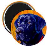Labrador Retriever dog Magnet