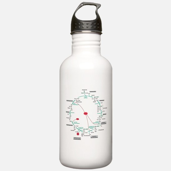 Kreb's Cycle Sports Water Bottle