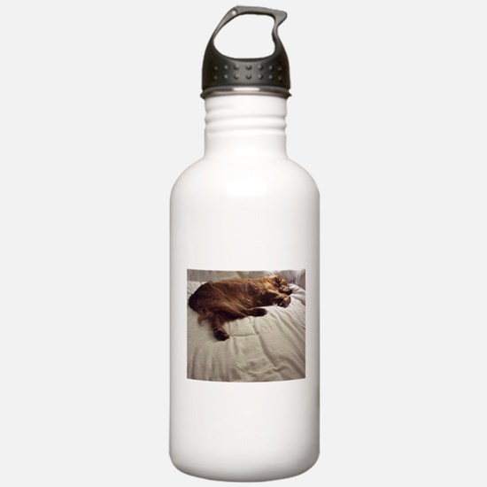 Pampered Water Bottle
