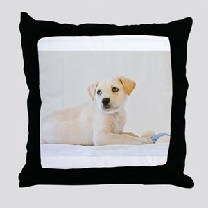 Labrador Puppy Dog Throw Pillow
