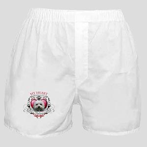 My Heart Belongs to a Maltese Boxer Shorts