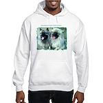 Sammy and Star Hooded Sweatshirt