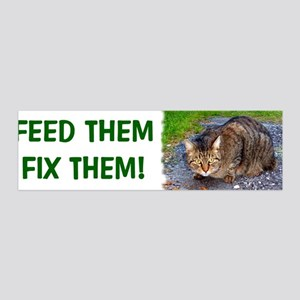 Feed/Fix with Feral Cat 36x11 Wall Peel