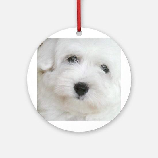 Coton de Tulear Ornament (Round)