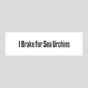 I Brake For Sea Urchins 36x11 Wall Peel