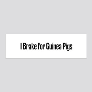 I Brake For Guinea Pigs 36x11 Wall Peel
