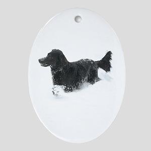 Ornament (Oval) - Flat Coated Retriever