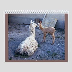 llamas and alpacas Wall Calendar