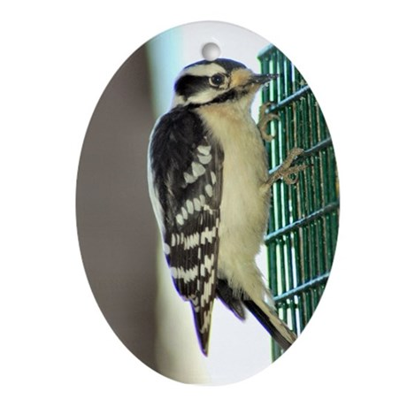 Downy Woodpecker Ornament (Oval)