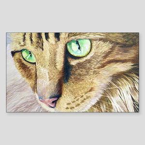 """Bright eyes"" Rectangle Sticker"