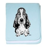 Basset hound Cotton