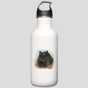 Chartreux Cat: Jonesy Stainless Water Bottle 1.0L