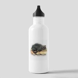 Jonesy Sleeping Stainless Water Bottle 1.0L