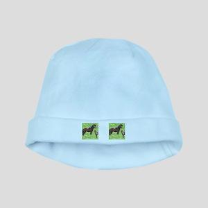 Mini Pinto Stallion & Daughte baby hat