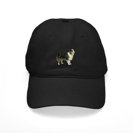 Aspen, Austrailian Shepherd Black Cap