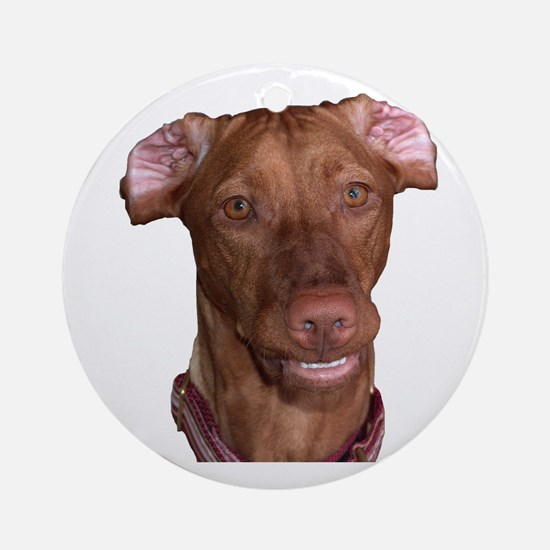 Silly Vizsla Smile Ornament (Round)