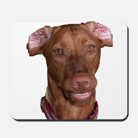Silly Vizsla Smile Mousepad