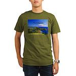 Antigua Organic Men's T-Shirt (dark)