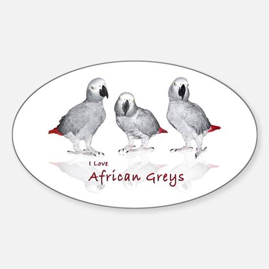 african grey parrots Sticker (Oval)