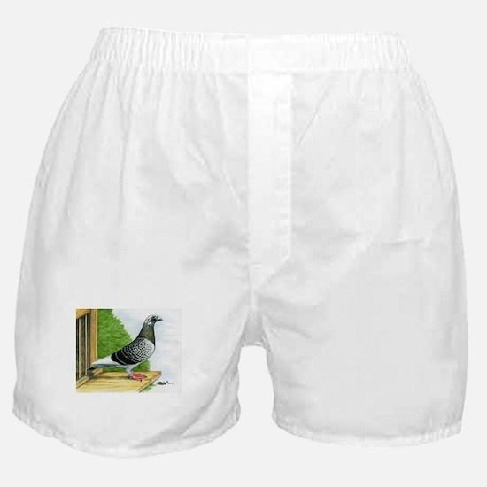 Racing Homer Pigeon Boxer Shorts