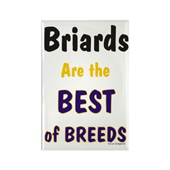 Briard Best of Breeds Rectangle Magnet