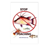 Anti-Poaching Handout Cards (8 pack)