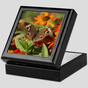 Buckeye Butterfly Gift Keepsake Box