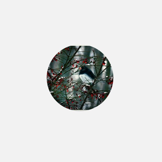 Black Eyed Junco Mini Button