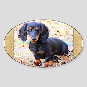 Puppy Love Doxie Sticker (Oval)