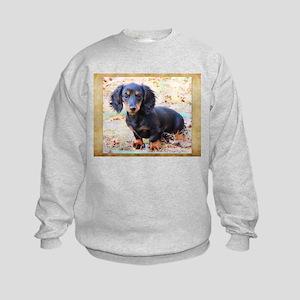 Puppy Love Doxie Kids Sweatshirt
